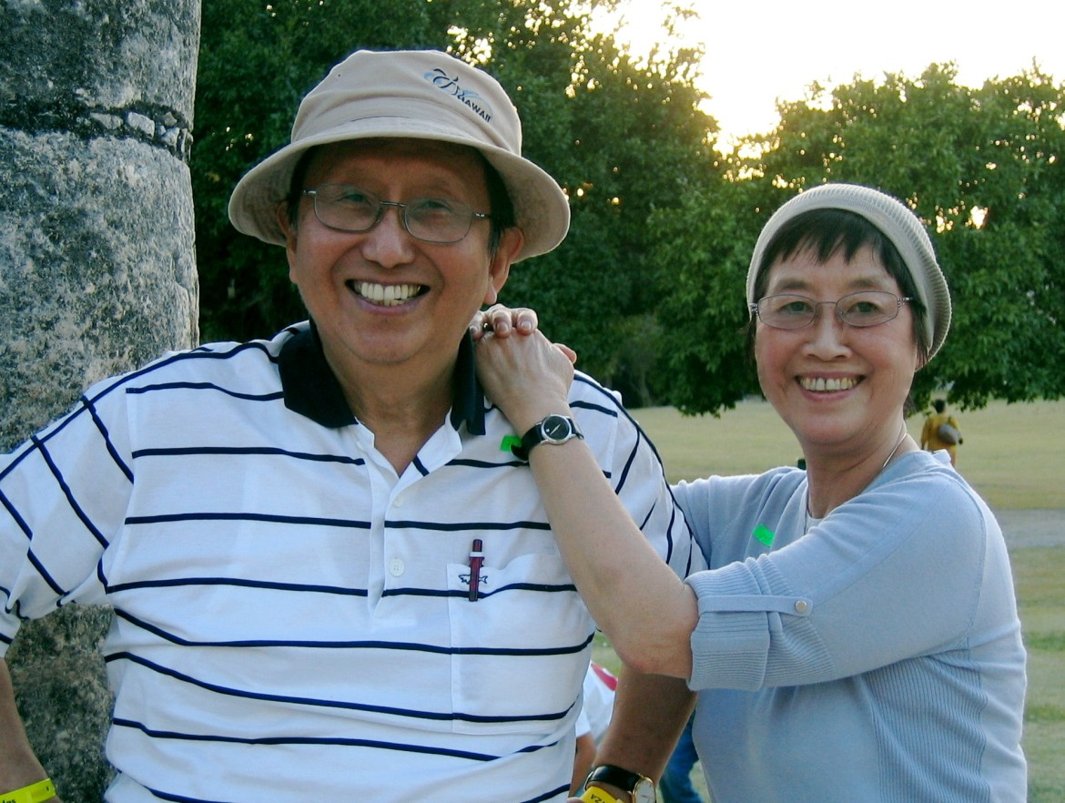 website-genius-dr-paul-and-lilian-wong-meaning-therapy